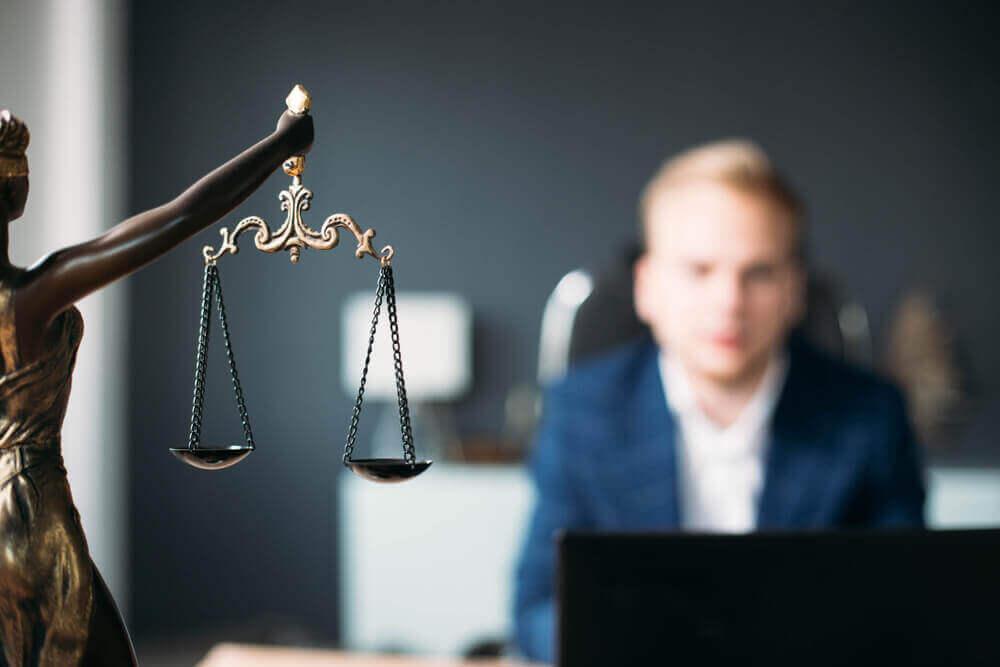 suporte empresarial advogado sp